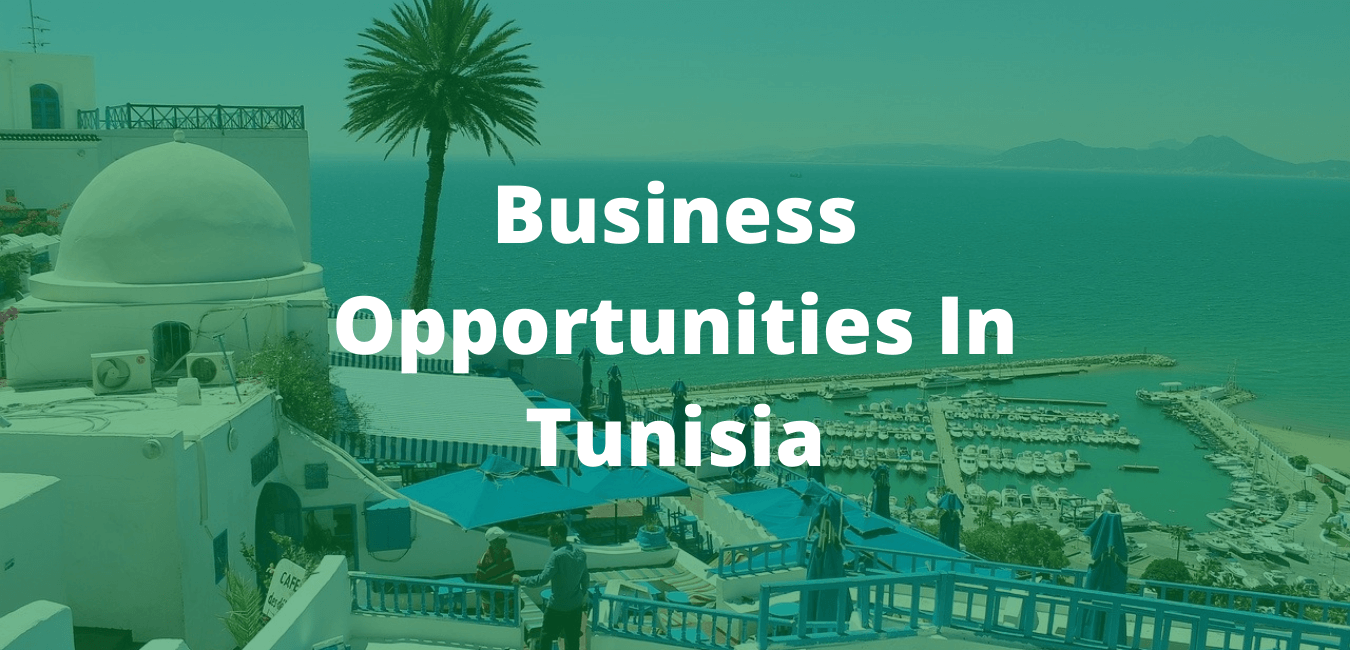 Business Opportunities In Tunisia